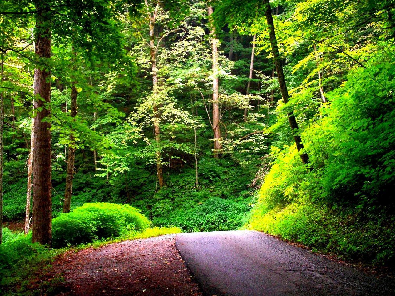 http://s5.picofile.com/file/8119899676/imagesalbum_blogsky_com_13_.jpg