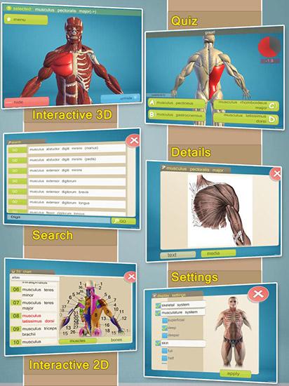 نرم افزار سه بعدی آموزش آناتومی Easy Anatomy 3D v5 (اندروید)