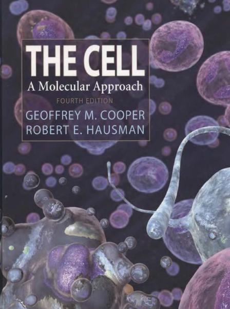 سلول با رویکرد مولکولی