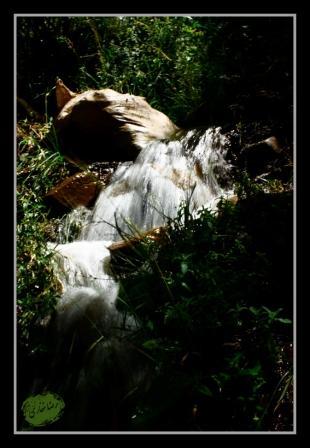 تکاب - طبیعت روستای دورباش