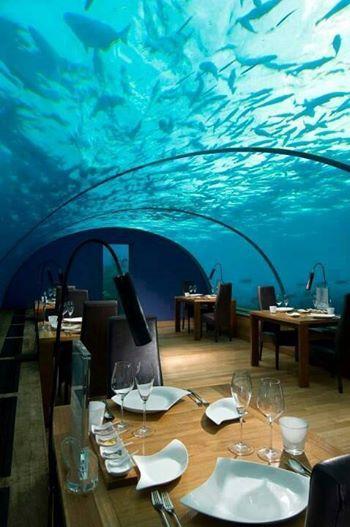 http://s5.picofile.com/file/8121460242/Ye_restoran_zire_darya_TO_Maldiv.jpg