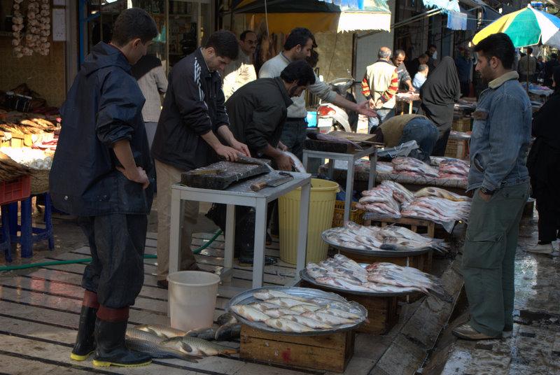بازار ماهی فروشان لنگرود