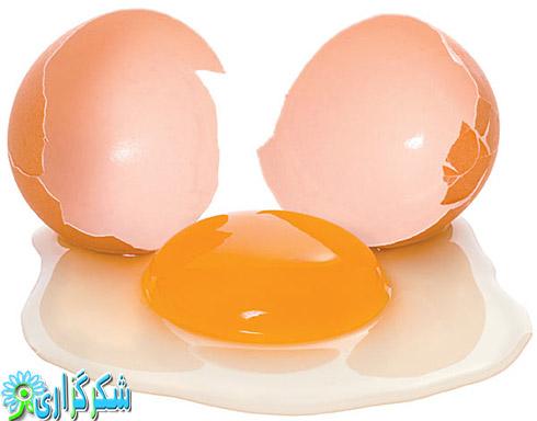 خواص و فواید مصرف تخم مرغ_جلوگیری از ضعیف شدن حافظه_آنتی اکسیدان های قوی