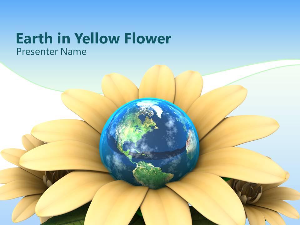 قالب پاورپوینت گل بسیار زیبا