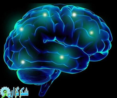 حافظه_تقویت حافظه_کم شدن حافظه