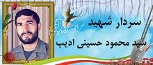 سردار شهید سید محمود حسینی ادیب