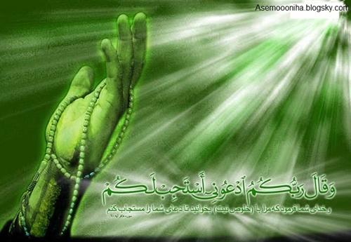 http://s5.picofile.com/file/8123671900/0_706342001311777285_taknaz_ir.jpg