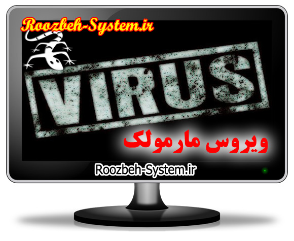 چطور با ویروس ایرانی مارمولک مقابله کنیم و آنرا از بین ببریم؟