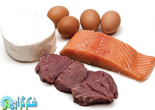 پروتئین-عکس-گوشت-مکمل های پروتئینی