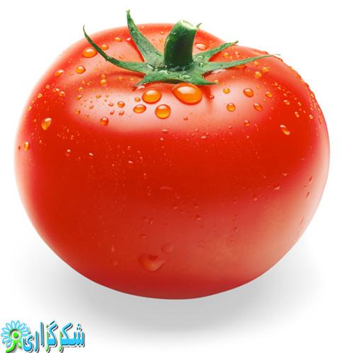 گوجه فرنگی-عکس-تصویر-گوجه قرمز-خواص درمانی گوجه-سرطان کلیه