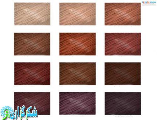 رنگ مو-جدول-عکس-مدل جدید-عکس-تصویر-انواع رنگ مو