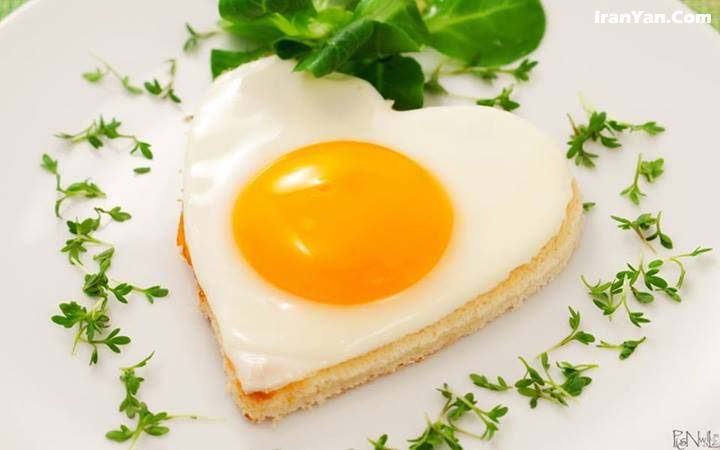 پزشکی: زرده تخممرغ بخوریم یا نخوریم؟