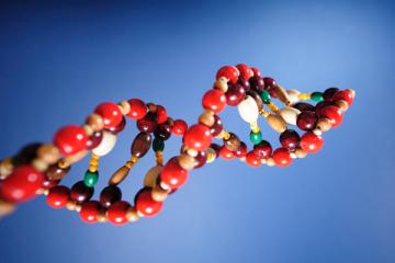 علمی و فناوری: دیگر برای شناسایی افراد نیاز به DNA نیست