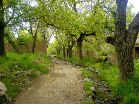 طبیعت اذرشهر