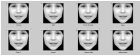 تازه های پزشکی: تشخیص بیماریهای ژنتیکی نادر با عکس خانوادگی