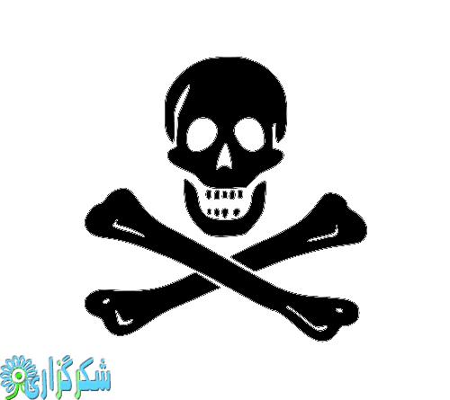 ریه-قلیان-عکس-قلیون-کشیدن-میوه-ای-عوارض-سرطان-دود-پرچم-دزد-دریایی
