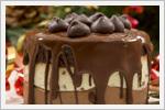 کیک های شکلاتی خوشمزه