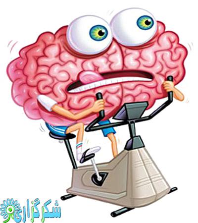 ضربه-مغزی-عکس-سر-درد-سکته-مغزی-تومور-مغزی-مرگ-مغزی