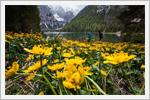 طبیعت زیبای ایتالیا