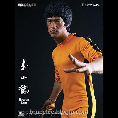 brucelee.blogfa.com