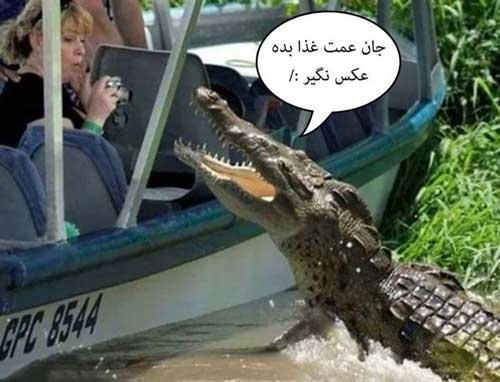 جدید ترین عکس های خنده دار باحال