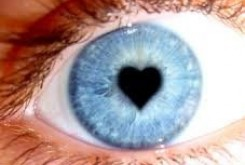 روانشناسی: «عشق در نگاه اول» در چه سنی رخ می دهد؟