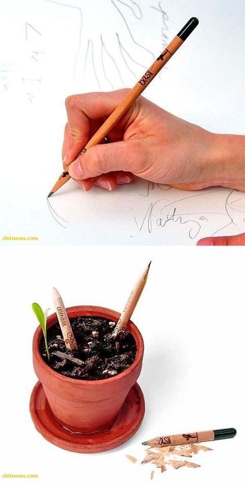 مطالب داغ: رویش گیاه از مداد!