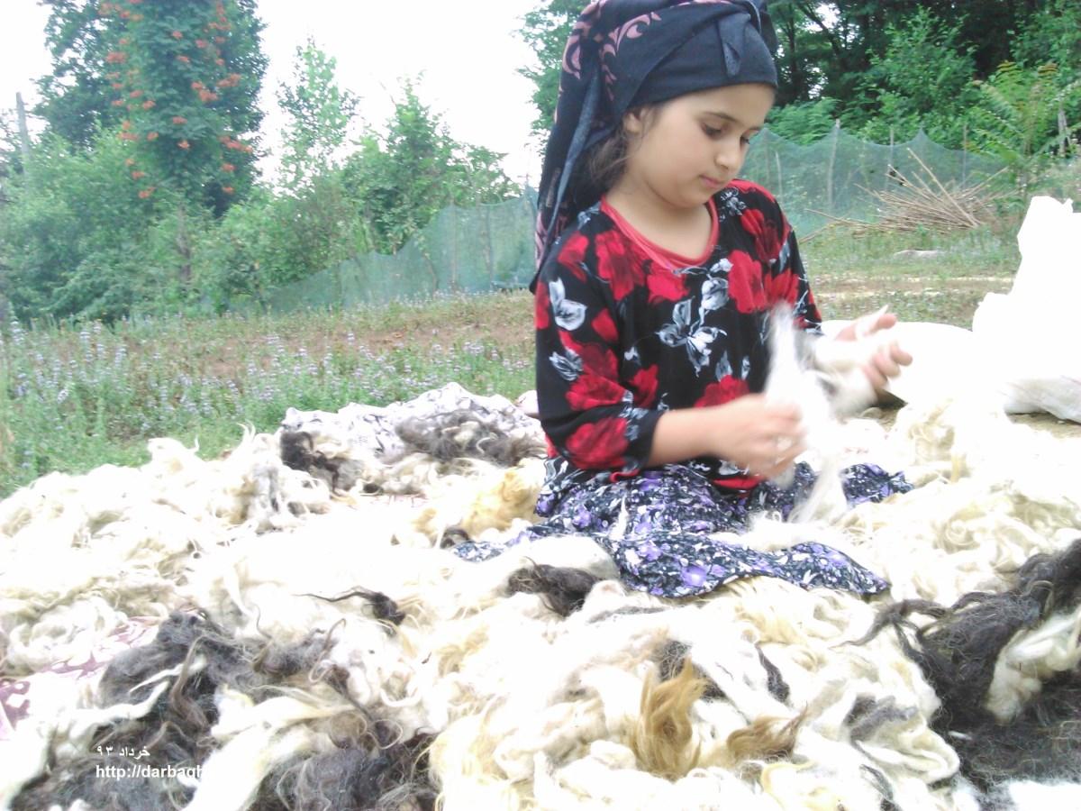 منتخبی از عکسهای خرداد و تیر 93