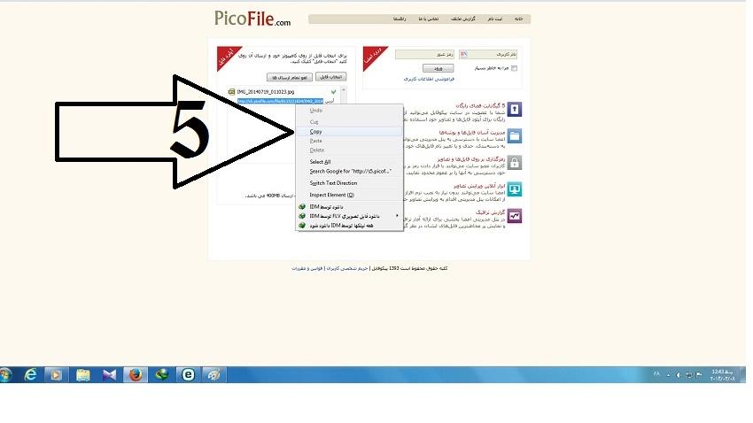 http://s5.picofile.com/file/8133226592/3.jpg