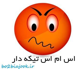 http://s5.picofile.com/file/8134497026/59016203578583235780.jpg