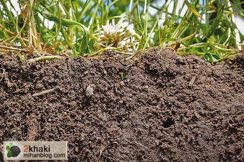 2خاکی، دو خاکی، سال جهانی خاک, محیط زیست
