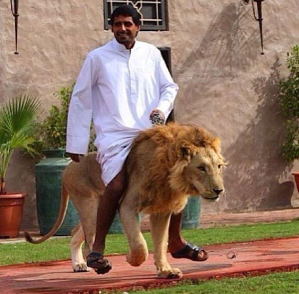 عکس خنده دار عربی
