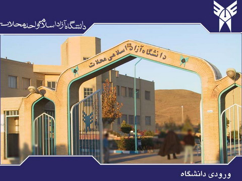 دانشگاه محلات