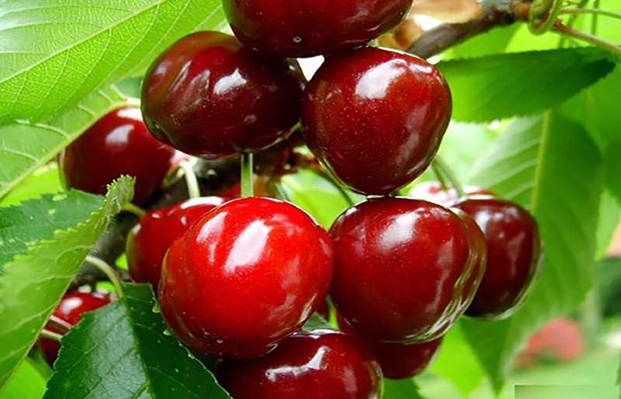 خواص میوه و سبزیجات: کشنده ترین دانه میوه تابستانی را بشناسید