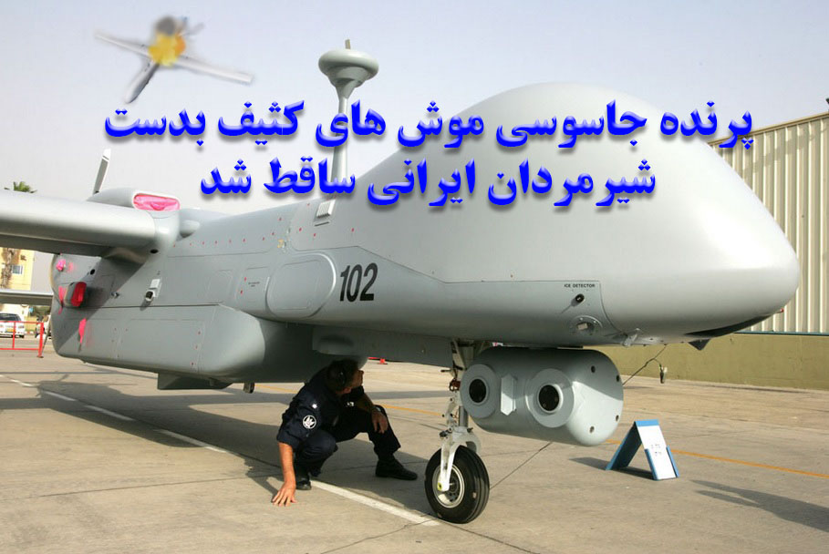 پهباد رادارگریز موش های کثیف بدست شیرمردان ایرانی ساقط شد