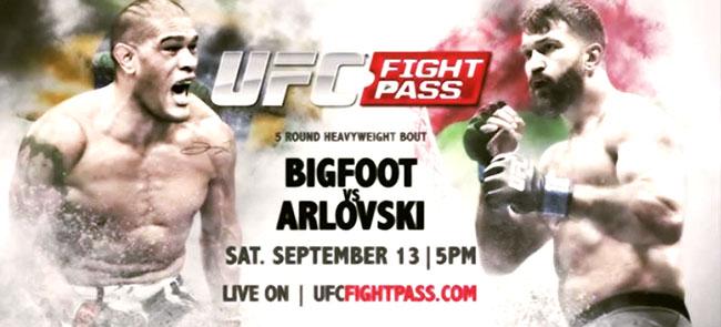 دانلود یو اف سی فایت نایت 51 | UFC Fight Night 51-Silva vs. Arlovski-نسخه ی H265-720p