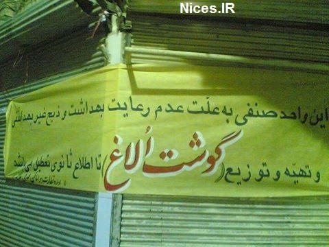 فروش گوشت الاغ در تهران