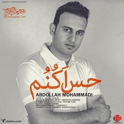 عبدالله محمدی - حس اکنُم