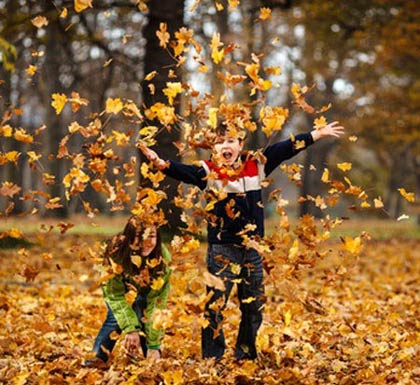 http://s5.picofile.com/file/8142913626/Interesting_figures_in_Nature_Photography_Fall_Photos_1_.jpg
