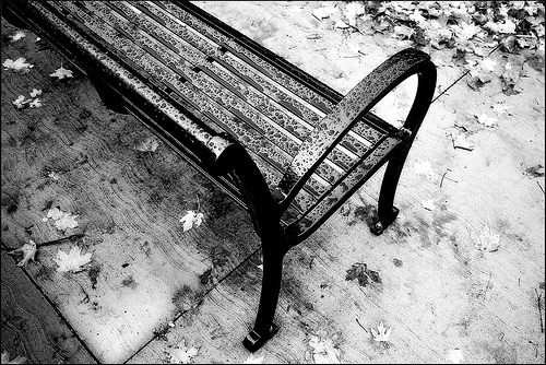http://s5.picofile.com/file/8143811176/alone_Bench_in_the_rain.jpg