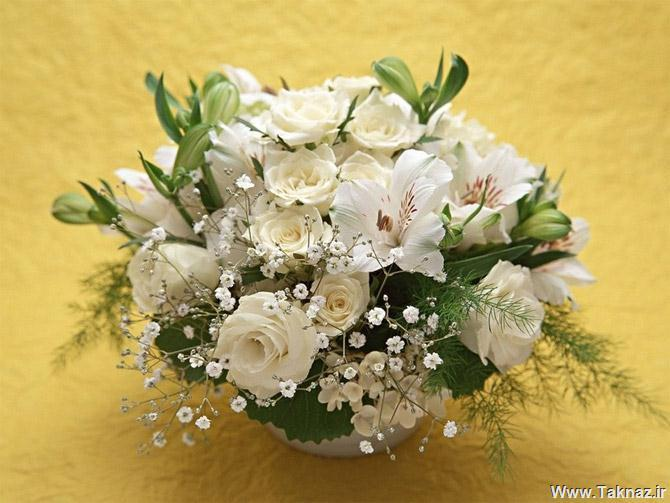 http://s5.picofile.com/file/8144032718/0_937470001284618638_a_bunch_of_flowers28429.jpg
