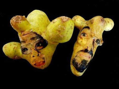 فتوگالری: چهره سازی با سیب زمینی