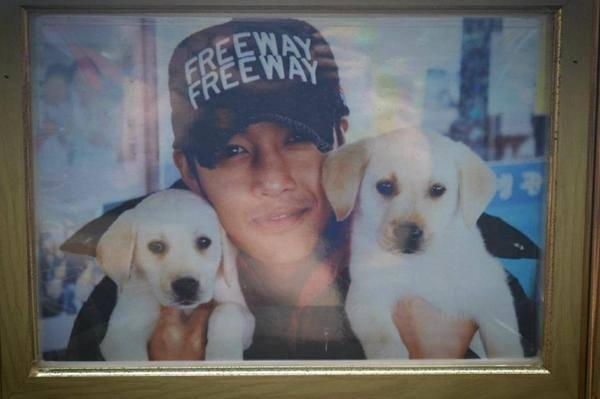 Kim Hyun Joong With Puppies