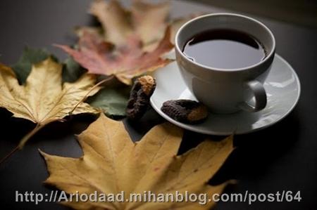 پاییز و نوشیدن یک فنجان قهوه! - آریوداد