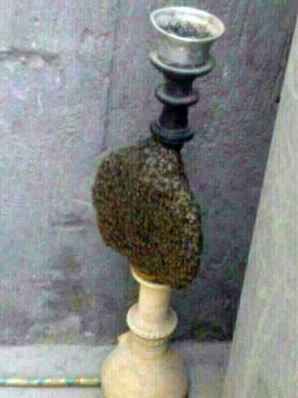 عسل قلیونی