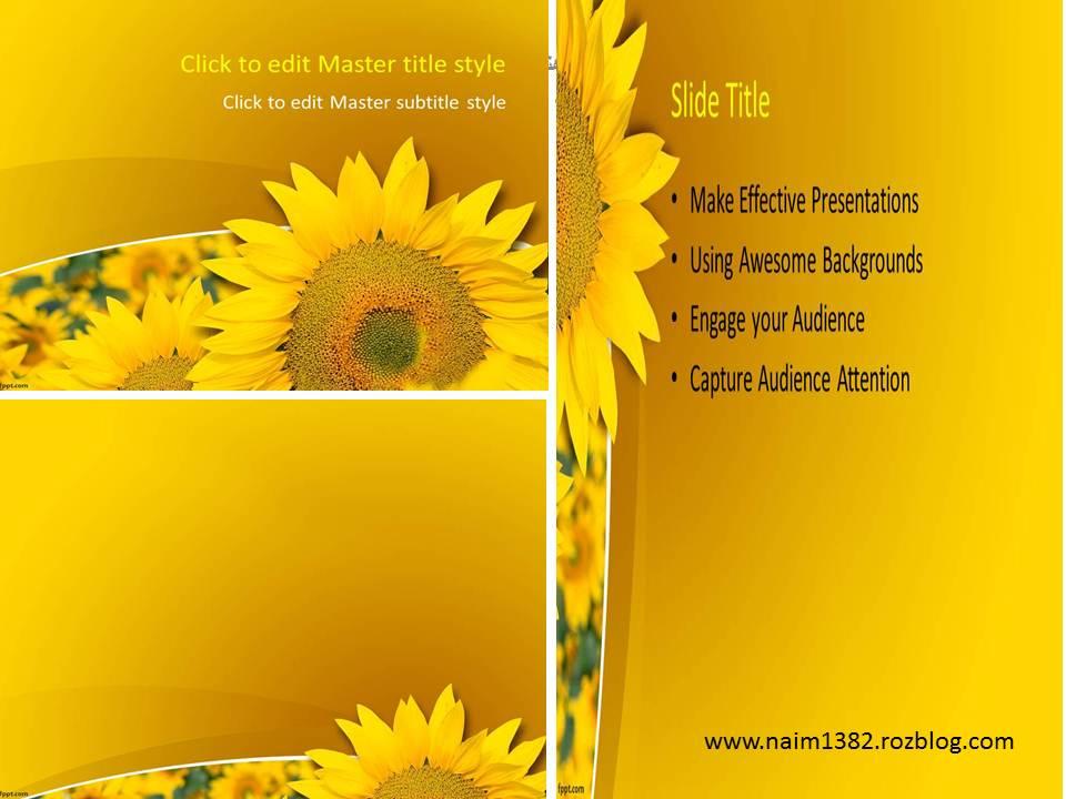 قالب پاورپویت گل آفتابگردان 2