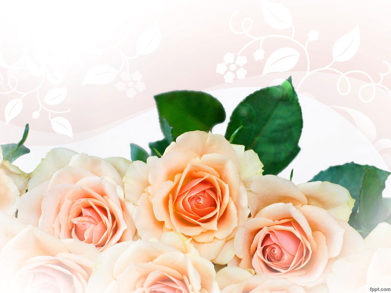 قالب پاورپوینت گل زیبا