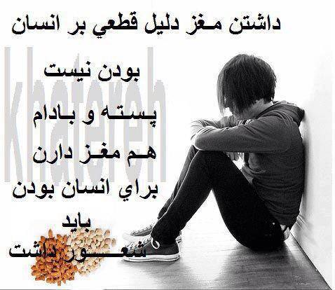 1234339_564021770301341_305641988_n.jpg