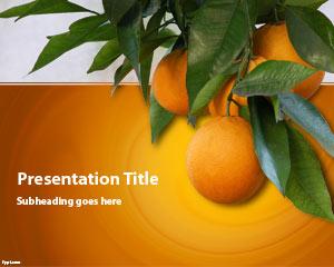 قالب پاورپوینت درخت پرتقال