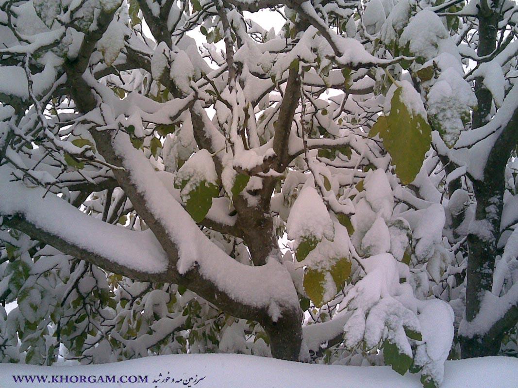 زمستان 93